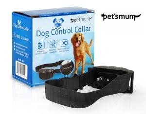 dog collar2